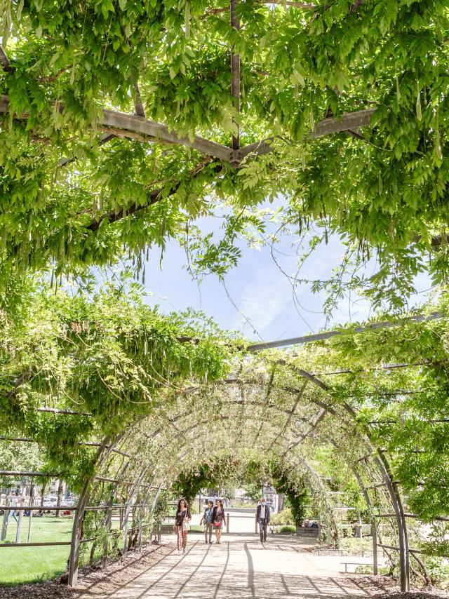 Promenade Jean-Turc Angers