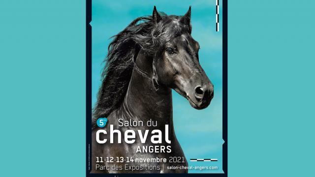 Salon du Cheval Angers 2021