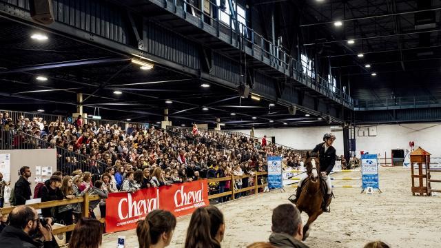 Salon du Cheval au Parc des Expositions