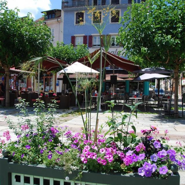 fleurissement-2018-9-mairie-dallevard-les-bains.jpg