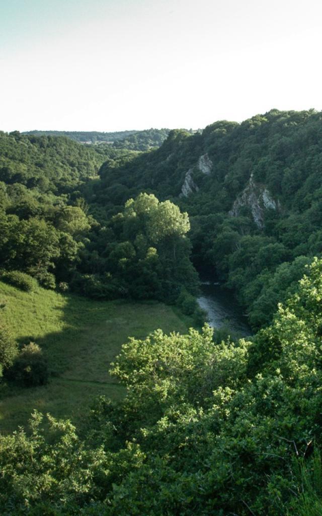 Vue panoramique sur le Canyon des Toyères
