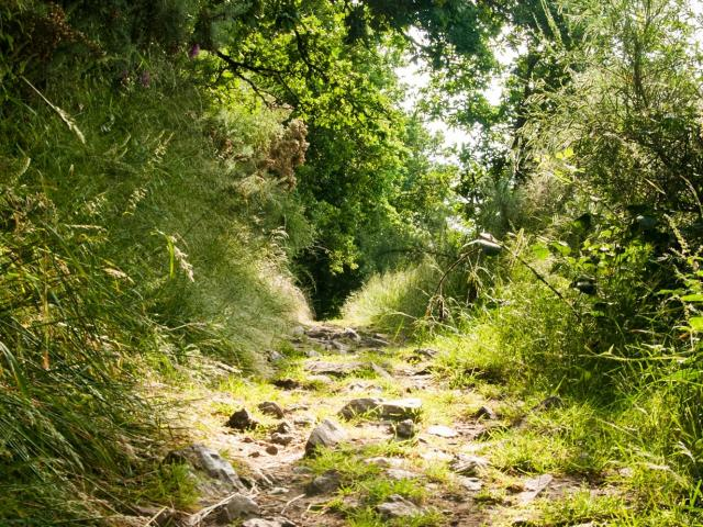 Chemin de randonnée dans les Alpes Mancelles
