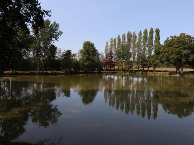 Reflets sur l'étang de l'Oisellerie à Ancinnes