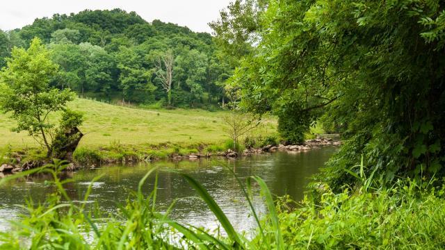 Au bord de la rivière Sarthe