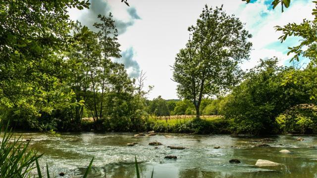 La rivière Sarthe