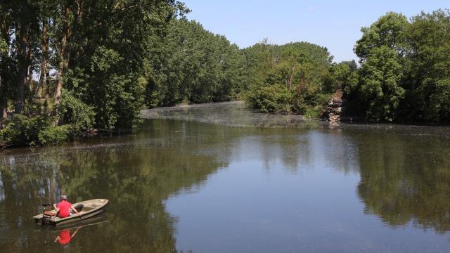Naviguer sur la rivière Sarthe au Gué Lian