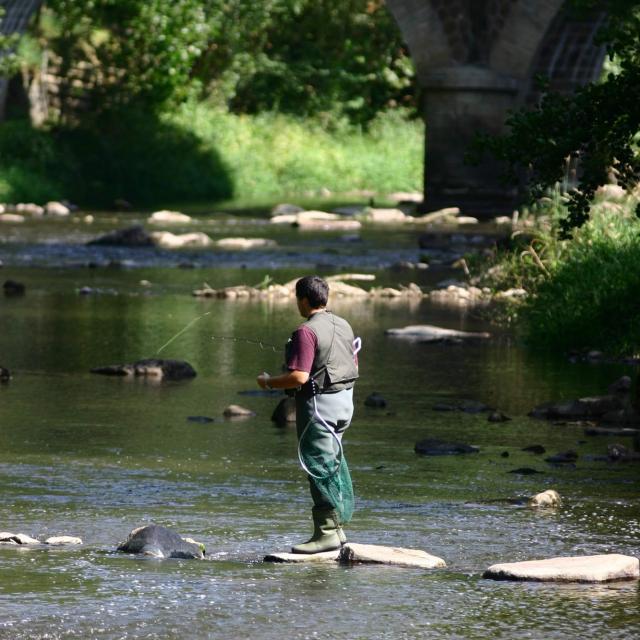 La pêche dans les Alpes Mancelles