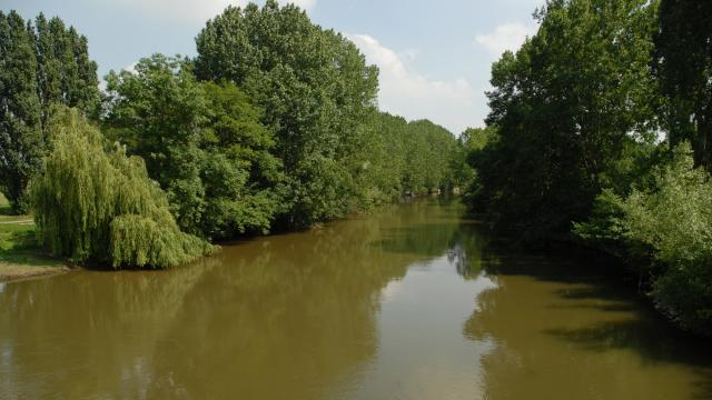 La rivière Sarthe à Saint-Marceau