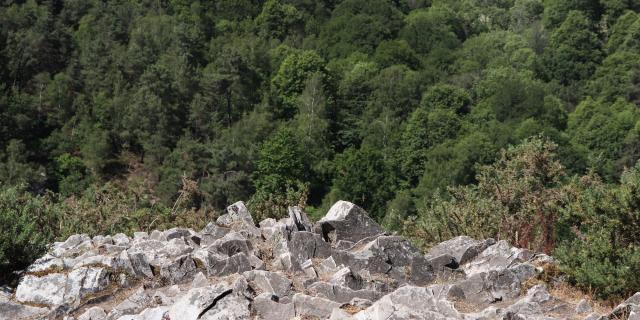 Les hauteurs de la Vallée de Misère