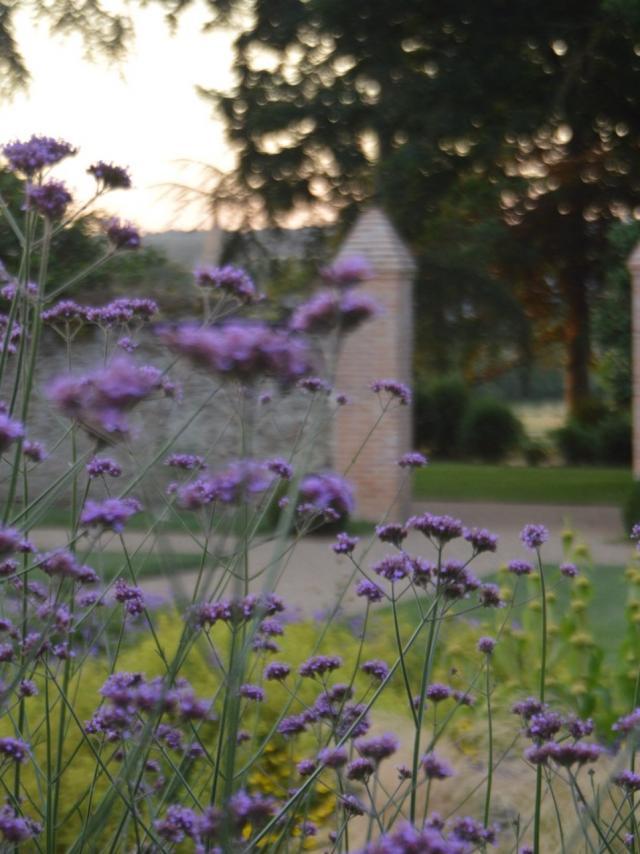chateau-de-falloux-c-chteau-de-falloux-3.jpg