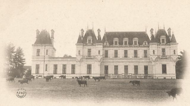 chateau-de-falloux-c-chteau-de-falloux-5.jpg