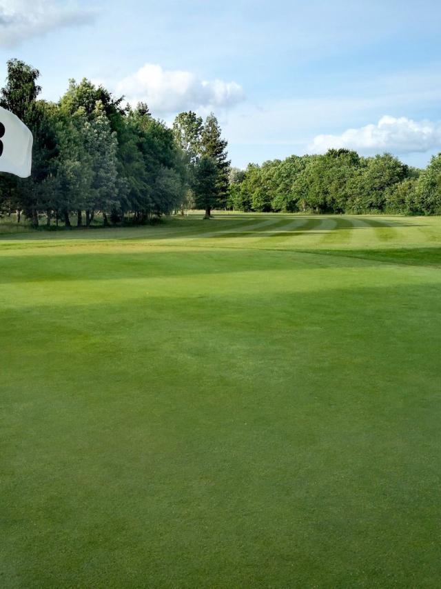 Parcours d'Anjou Golf Green 3