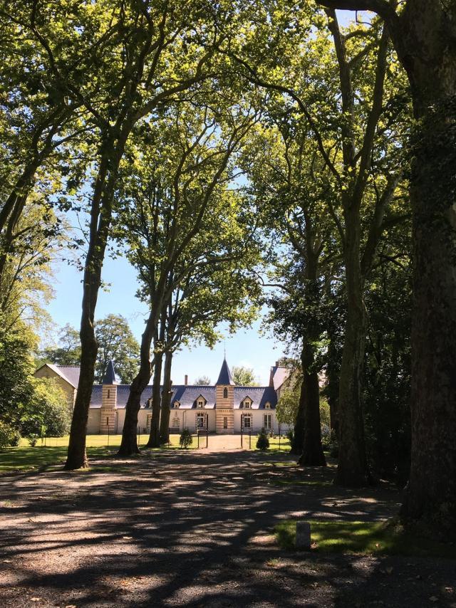 chateau-du-patys-chateau-du-patys.jpg