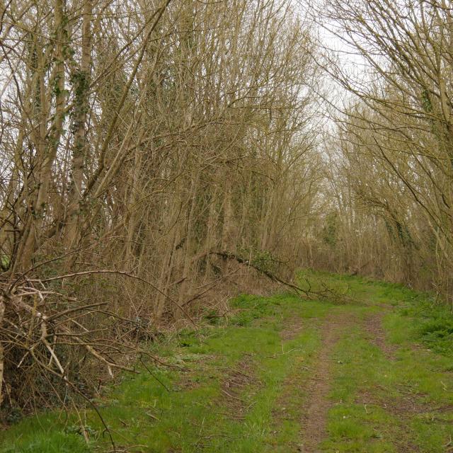 sentier-de-randonnee-anjou-bleu-2.jpg