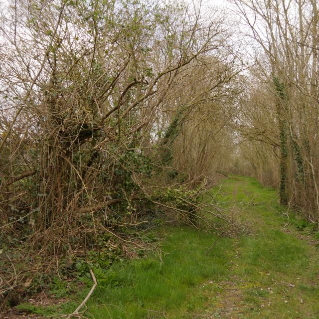 sentier-de-randonnee-anjou-bleu-3.jpg