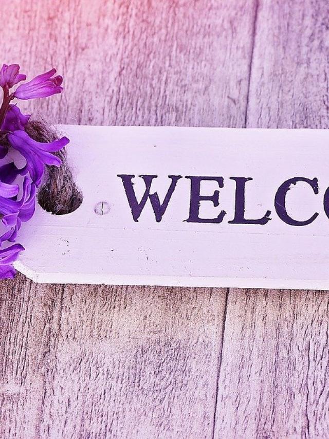 bienvenue-2-pixabay-pezibear.jpg