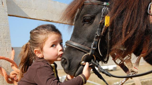cheval-et-enfant-fotolia.jpg
