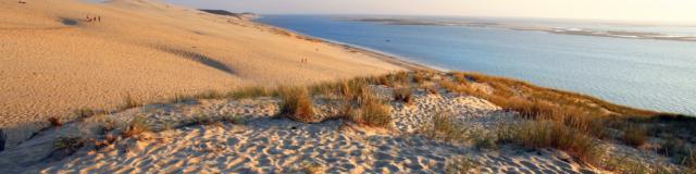 Coucher De Soleil Dune3