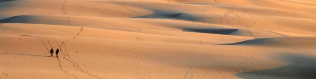 Coucher De Soleil Dune4