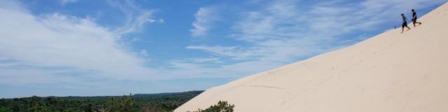 Dune Et Forêt@conteurs