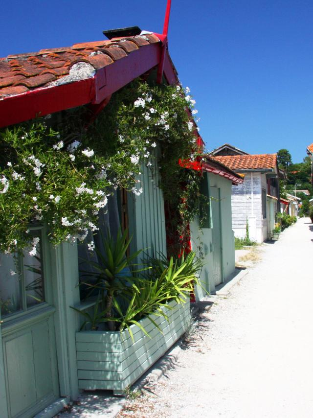 Village Ostreicole Cap Ferret