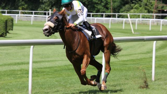 Cheval Hippodrome