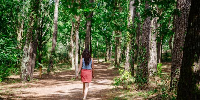 Balade En Forêt@conteurs