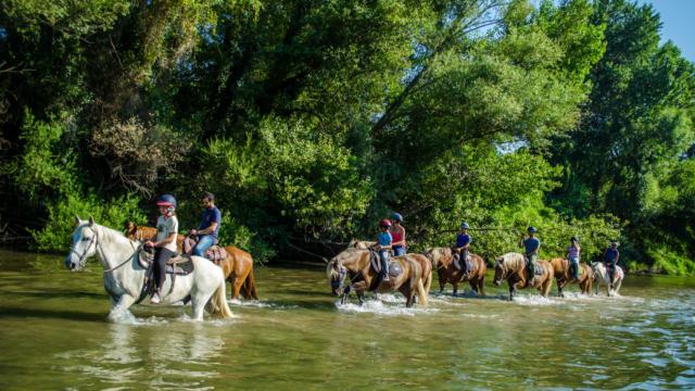 Promenade à cheval à Argelès-sur-Mer