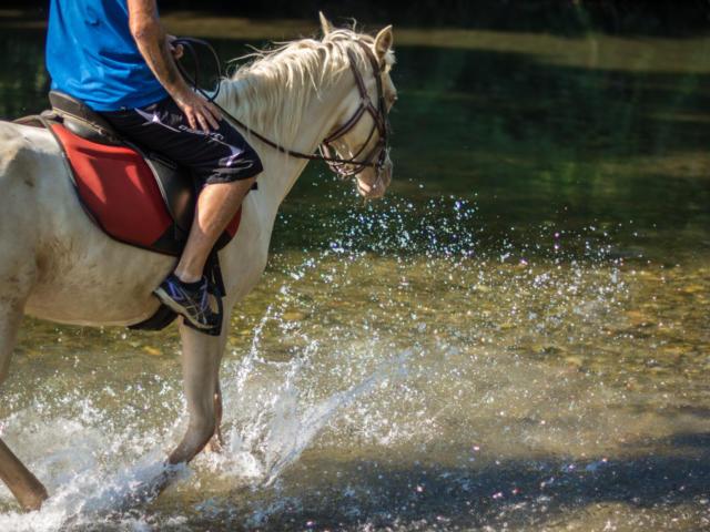 Traversée du Tech à cheval