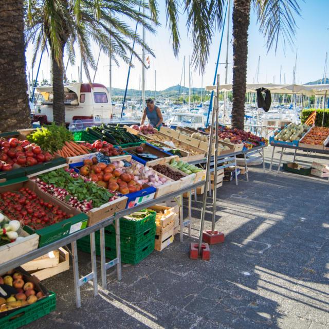 Marche Argeles Port S.ferrer
