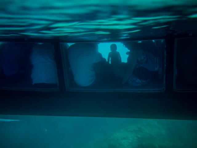 Promenade Mer Vision Sous Marine Argeles S.ferrer (11)