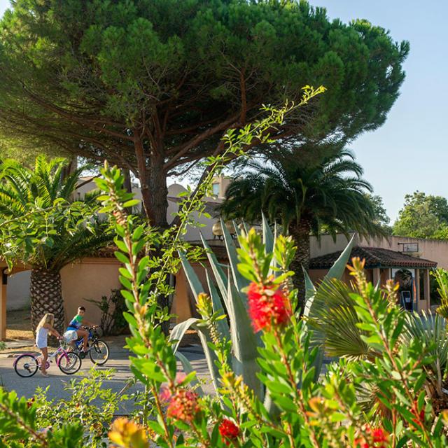 Residences Argeles Sur Mer