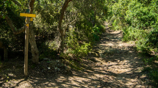Trail Valmy Argeles S.ferrer (13)