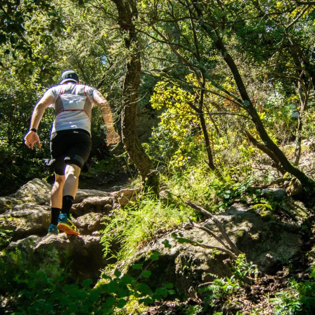 Trail Valmy Argeles S.ferrer (17)
