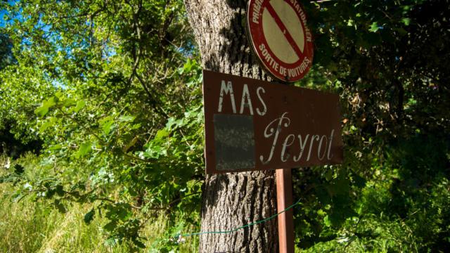 Trail Valmy Argeles S.ferrer (2)