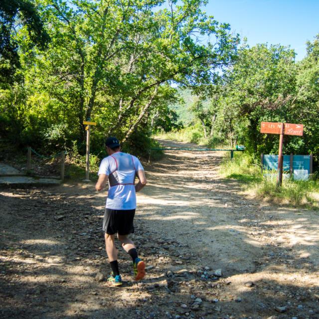 Trail Valmy Argeles S.ferrer (6)