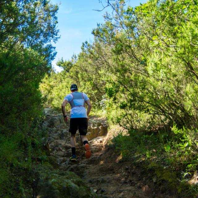 Trail Valmy Argeles S.ferrer (7)