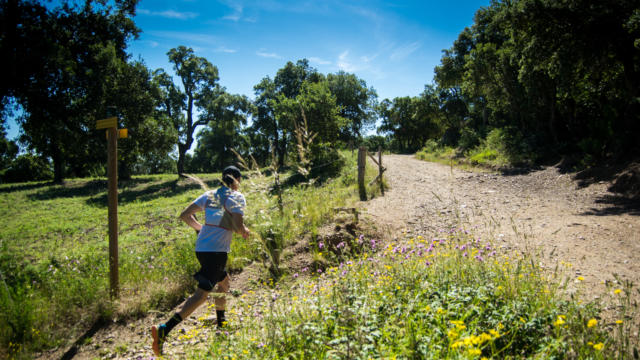 Trail Valmy Argeles S.ferrer (9)