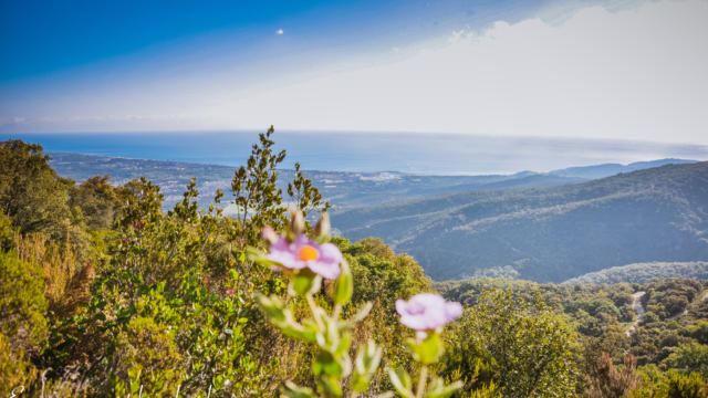 Argeles Nature Trail (2)2019