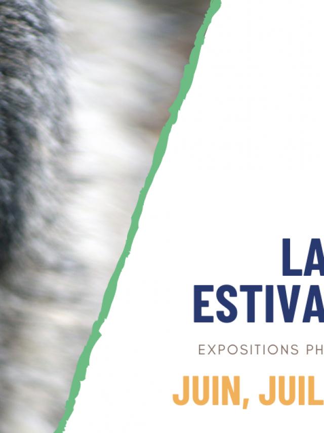 festival-marenda-2021.png