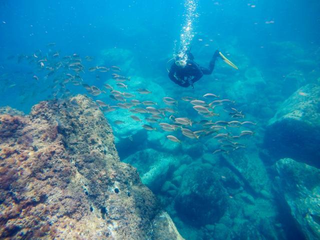 plongee-sous-marine-argelestourisme-garnements-1367-1200px.jpg