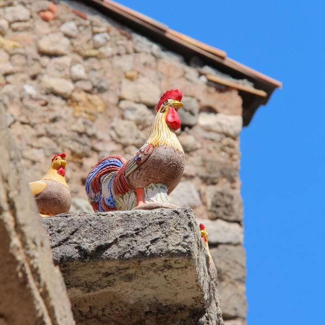 Argile Coq Roquevaire Oti Aubagne