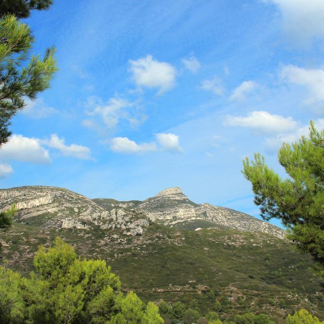 Cretes Panorama Arbres Garlaban Massif De L'etoile Nature Oti Aubagne
