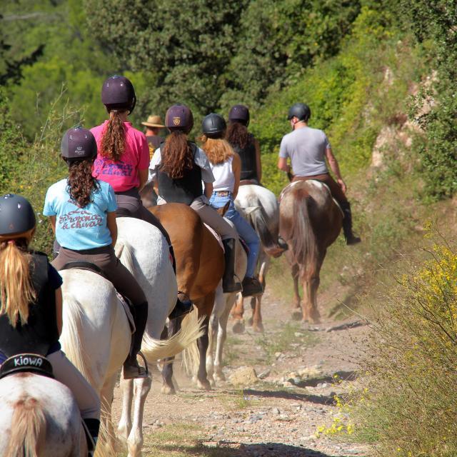 Equitation Chevaux Balade Promenade La Provence A Cheval Oti Aubagne
