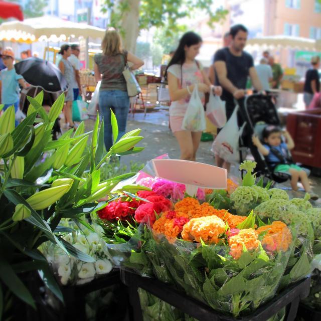 Fleurs Famille Marche Auriol Oti Aubagne