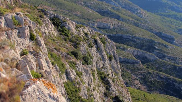 Garrigue Collines Massif De L'etoile Nature Oti Aubagne