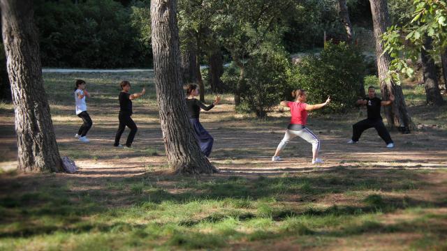 Qi Gong Exercices Activite La Font De Mai Oti Aubagne