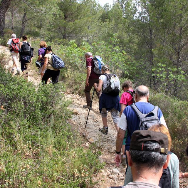 Randonée Sentier Massif Etoile Garlaban Groupe Guide Randonnee Oti Aubagne