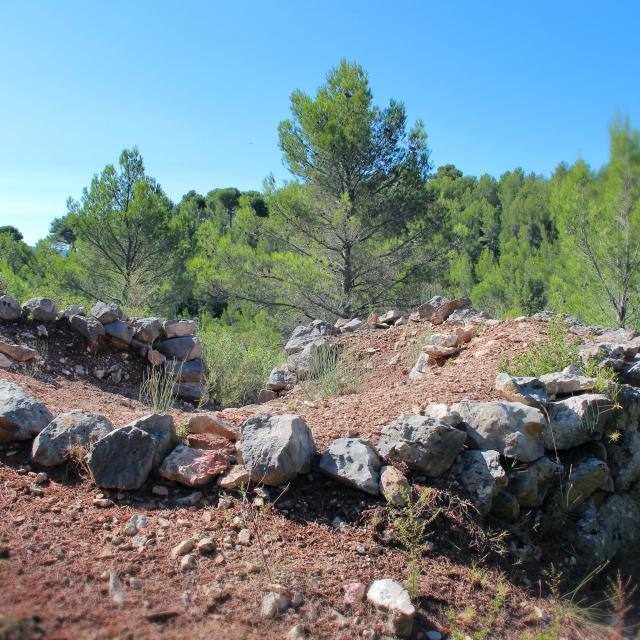 Sentier Pierres Pins Nature Oti Aubagne