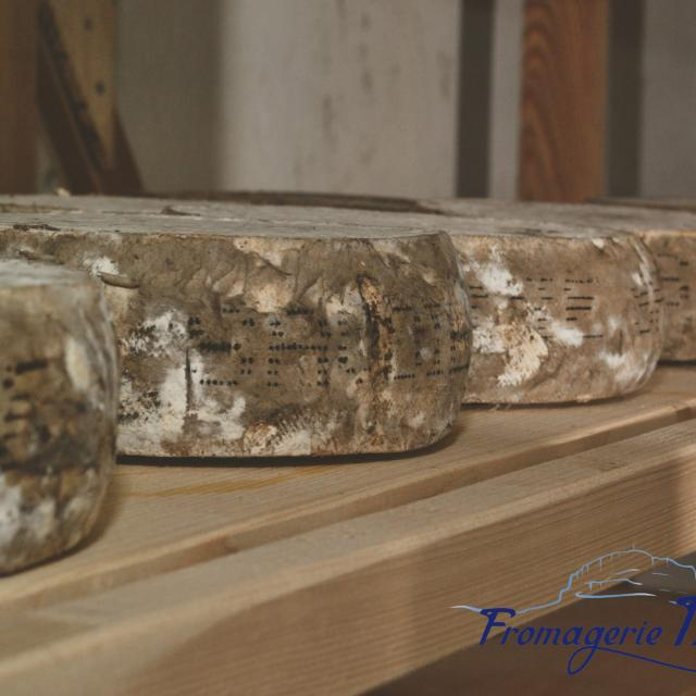 fromages-fromagerie-bellon-oti-aubagne-scaled.jpg